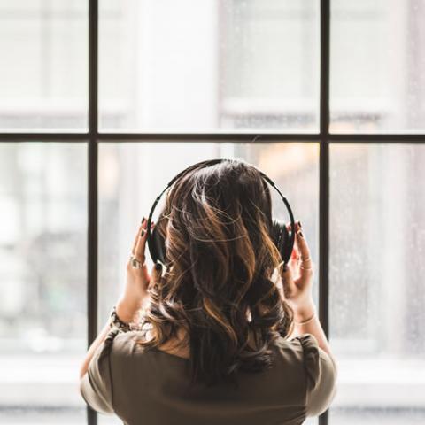 Audiology and Speech-Language Pathology Minor