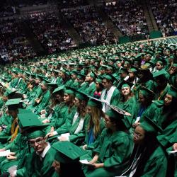 A sea of Mean Green